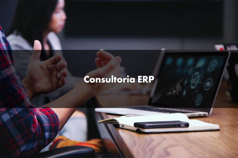 Consultoria erp protheus